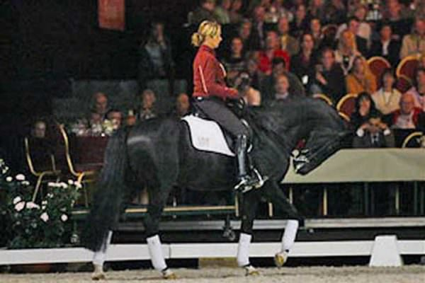 Anky van Grunsven rides her horse Salinero in hyperflexion at the Global Dressage Forum