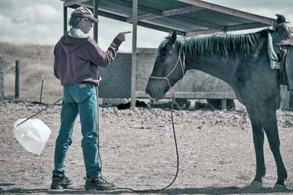Man points his finger at a tired looking horse