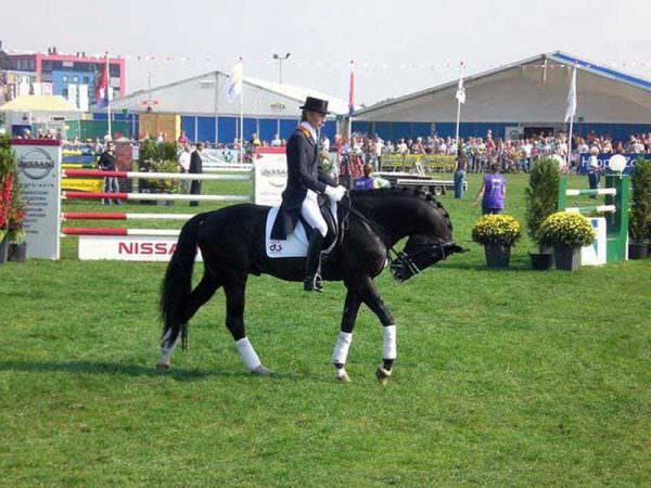 Edward Gal rides Moorlands Totilas in Rollkur Hyperflexion at the walk