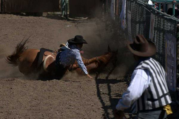 Barrel Racing Fall