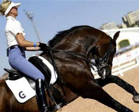 Anky rides her horse in hyperflexion at the canter
