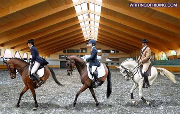 When dressage horses are manipulated into behaving like robots rather than partners it is unfortunate to watch them perform.