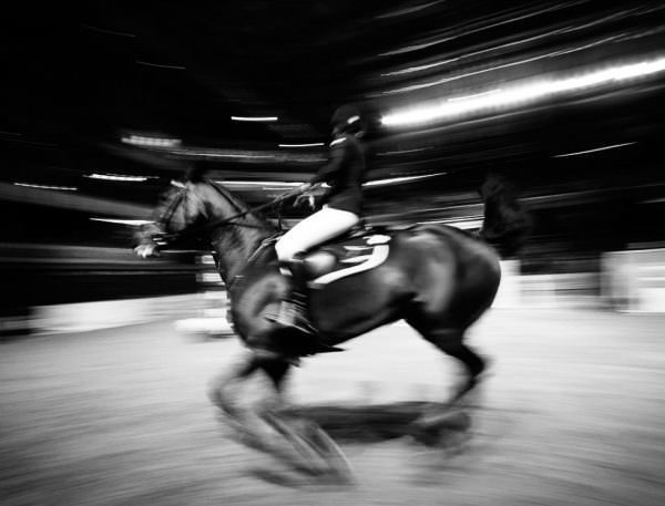 Horse and rider speed through an arena in a jumping competition.