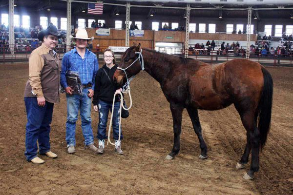 2013 Iowa Horse Fair Colt Starting Challenge Winner Logan Allen