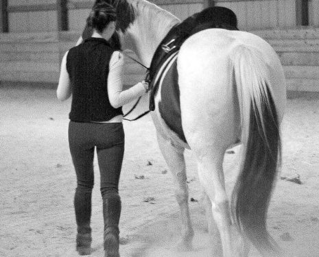 Other Equestrians' Success Is Not Your Failure