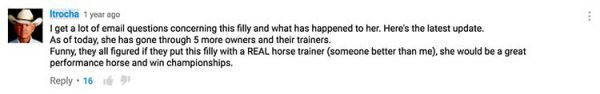 I get a lot of email questions concerning this filly and what has happened to her. Here's the latest update. As of today, she has gone through 5 more owners and their trainers. Funny, they all figured if they put this filly with a REAL horse trainer (someone better than me), she would be a great performance horse and win championships.
