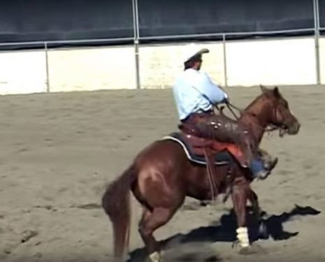 Larry Trocha Teaches Us How to Create Difficult Horses