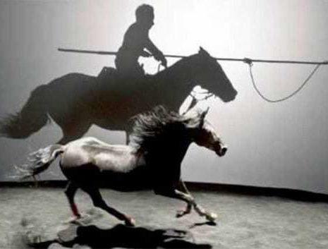 Equestrian Theater Is Alive! Thanks To Bartabas : Zingaro : Battuta