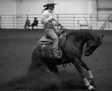 Reining Competitions Promote Hyperflexion and Running the Horse into Walls