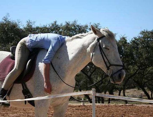 English rider lays over her horse's neck while her horse stands lazily closing his own eyes.