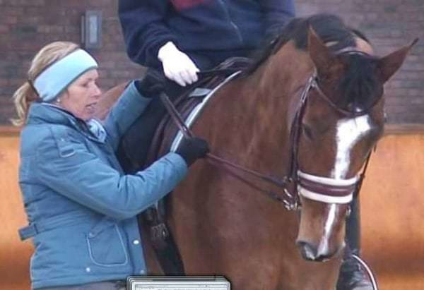 Anky van Grunsven teaching a student how to ride with Rollkur