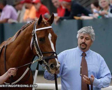 PETA Exposes Horse Racing