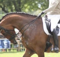 The 'Moment in time' argument to excuse horse abuse is just that, an excuse for horse abuse.