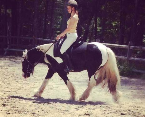 Finding Balance In Dressage