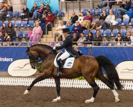 Money Isn't a Factor in Competitive Dressage