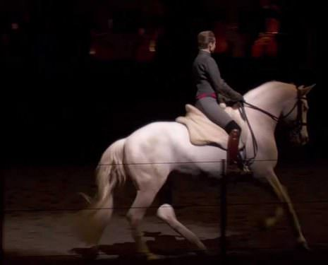 When Equestrian Art Meets Mozart & Bartabas