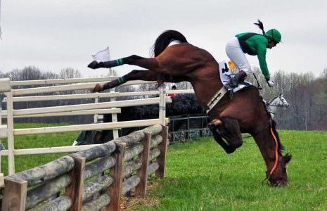 Putting Your Horse At Risk is Bad Horsemanship