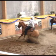 Martin Muehlstaetter abusing his horse during warm-up for the FEI World Reining Finals.