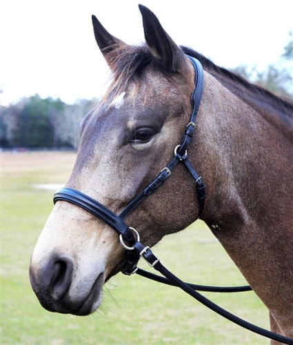 Bitless bridle, or riding halter, from Dressage Naturally.
