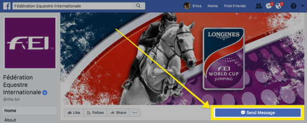 Select the Send a Message button on the FEI's Facebook page to tell them how you feel about their decision.