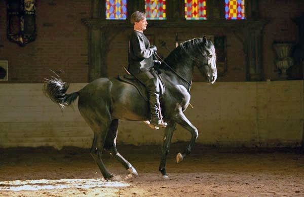 Alexander Nevzorov rides his stallion in piaffe, without a bridle.