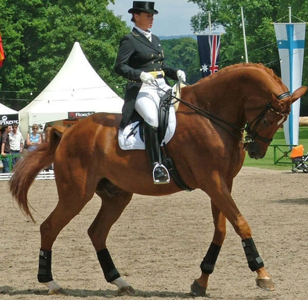 Isabell Werth riding in hyperflexion.