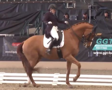 If Dressage Could Save Itself